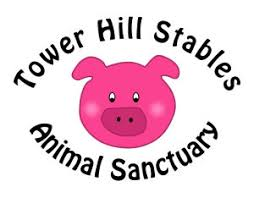 Tower Hill Stables