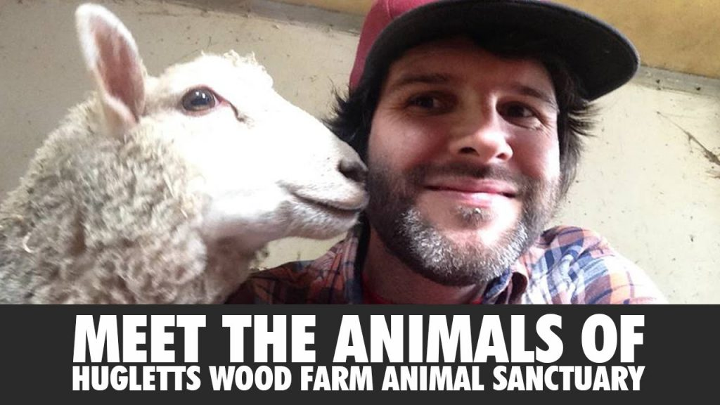 Hugletts Wood Farm